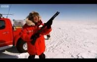 Polar expedition Top Gear