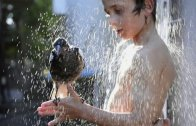'Adopted' magpie taking a shower