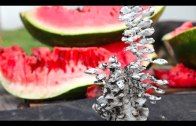 Watermelon vs molten aluminum
