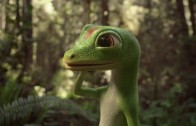 Gecko Gaico Commercial