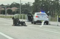 Brave people help cops