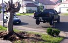 Pick Ups vs Tree Stumps
