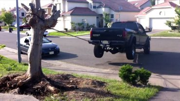 Pick Ups vs Tree Stumps